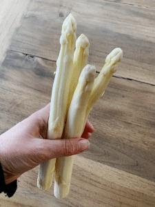 witte asperges, het witte goud, recepet hip tafelen